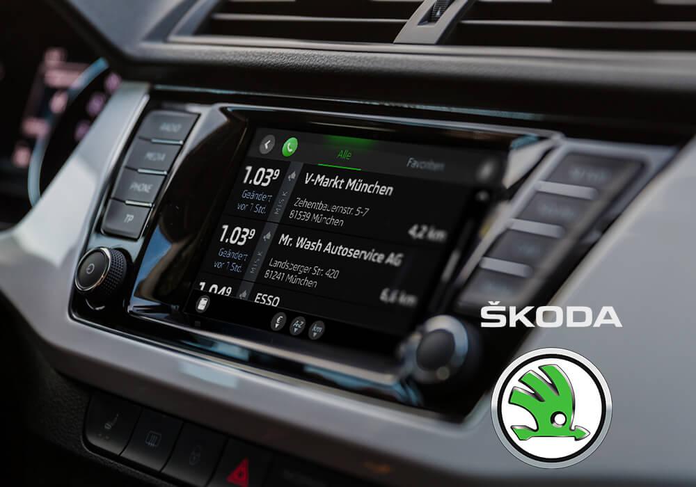Skoda Logo Auto Interior